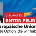 Die Europäische Union – Die beste Option, die wir haben?